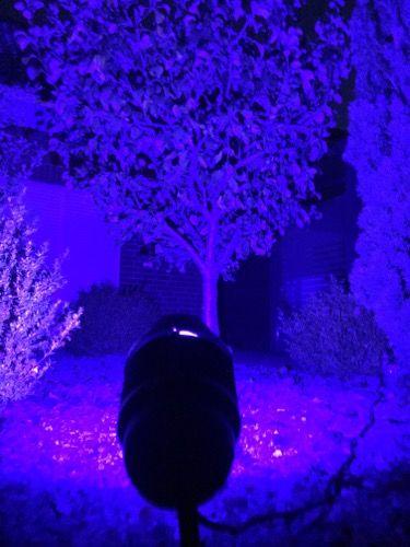 RGBW-Gartenstrahler Farbe blau