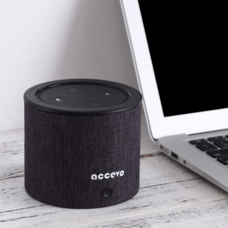 Echo Dot Accevo 10.000 mAh Powerbank