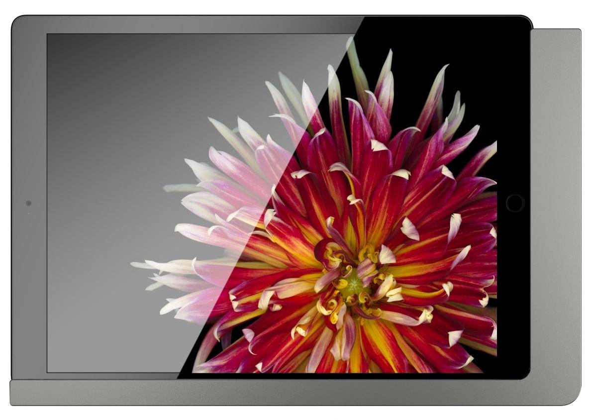 iPad Wandhalterung im Vergleich